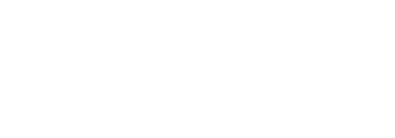 Network West Midlands Logo